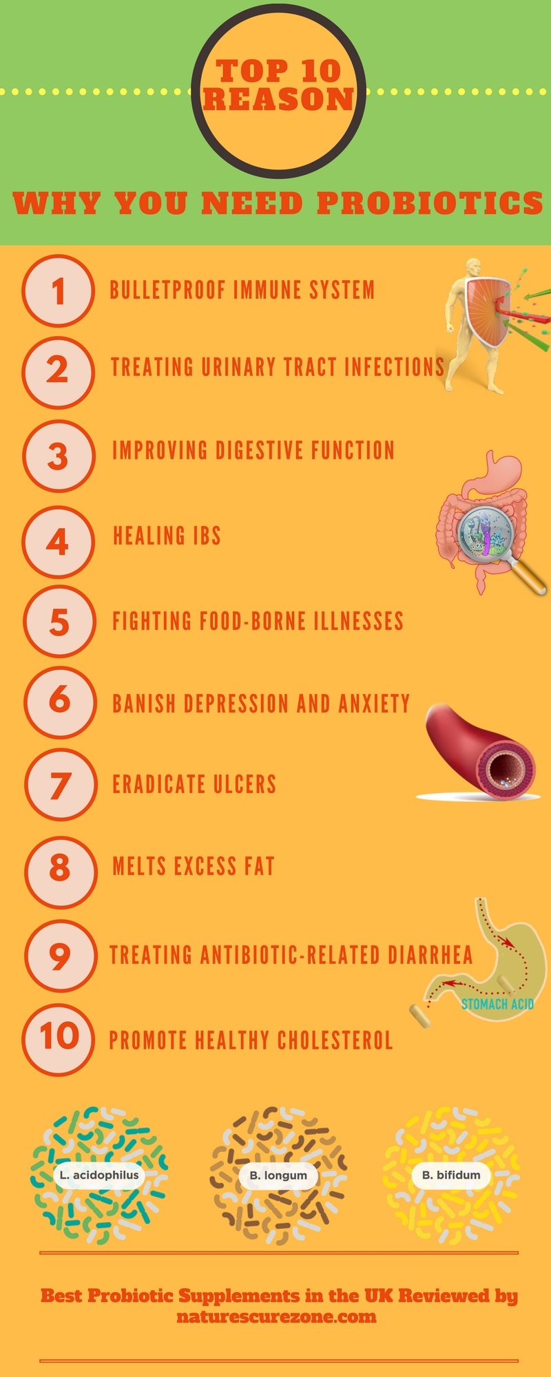 infographic of the top 10 reason to take best probiotics UK brand